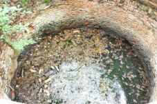 graphicstock-water-well-in-the-woods-filled-with-dirty-water-and-garbage_HeiTjSMF-_thumb.jpg